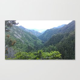The green valley Canvas Print