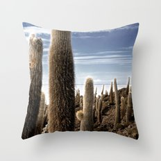Cactus in Incahuasi Throw Pillow