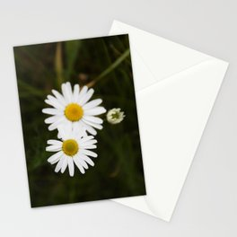 Three Daisies Stationery Cards