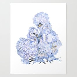 Silkie Chickens - Aspen and Toto Art Print