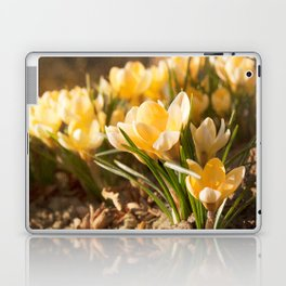 Spring is coming Laptop & iPad Skin