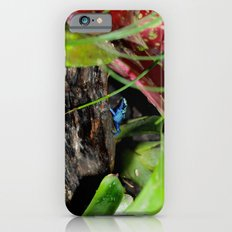 Poison Dart Frog- Young Froglet Slim Case iPhone 6s