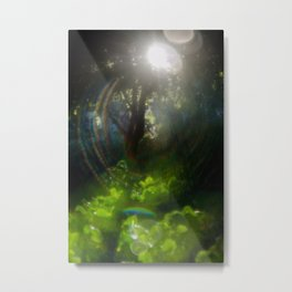 Rainbow Flare (Magic Garden Series) Metal Print