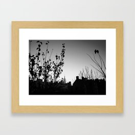 Urban Garden 1 Framed Art Print
