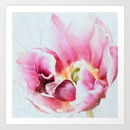Paradise Tulip Art Print
