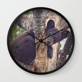 Photo of a Black Bear Cub in Northern Minnesota Wall Clock