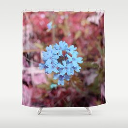 Blue Flowers, Red Thorns ~ Cedars of Lebanon, Tennessee Shower Curtain