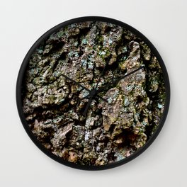 Do You Lichen This? Wall Clock