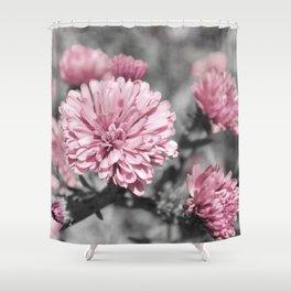 Blushing Gray Shower Curtain