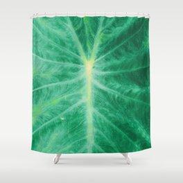 Colocasia Esculenta Shower Curtain