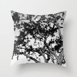 Torote y La Luna Throw Pillow