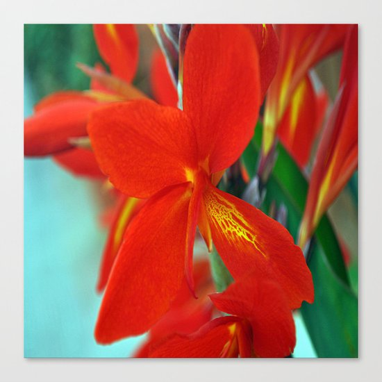 flower nature #   ###    # Canvas Print