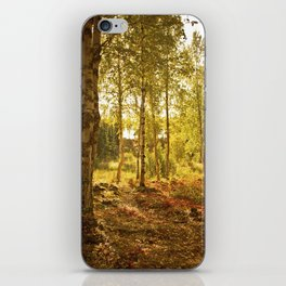 Forrest in the Fall iPhone Skin