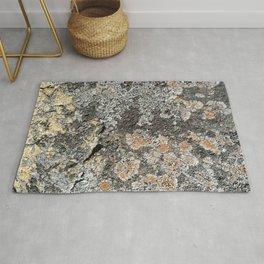 Lichen on the granite rock Rug