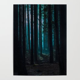 Magic Forest Poster