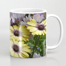 Yellow and Purple African Daisies Coffee Mug
