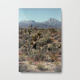 Cold Creek, Nevada Metal Print