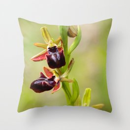 Cyprus Bee Orchid I Throw Pillow