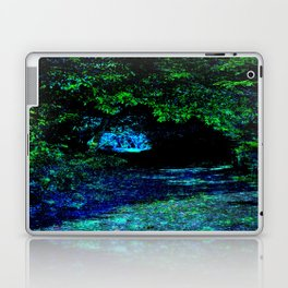 Enchanted Forest Path Laptop & iPad Skin