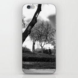 Cloudy day in the park iPhone Skin