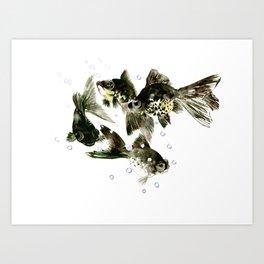 Fish Black Moor Black aquarium fish design fish home decor feng shui Art Print