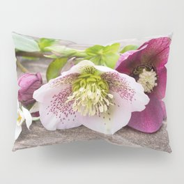Gifts from the Garden Pillow Sham