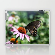 Eastern Tiger Swallowtail - Black Morph Laptop & iPad Skin