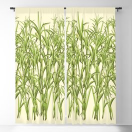 Sugar Cane Exotic Plant Pattern Blackout Curtain