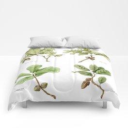 The Oaks Comforters