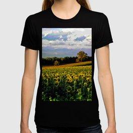 Summer sunflower field T-shirt