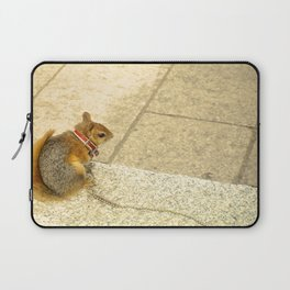 Squirrelly  Sightings Laptop Sleeve