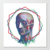 anatomy Canvas Prints featuring Anatomy by RAdesigns