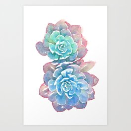 Double Cactus Rose Art Print