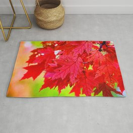 Red Maple Leaf Tree [Fall Nature Photography] Rug
