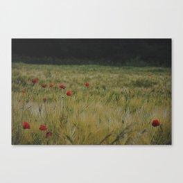 Coquelicots Canvas Print
