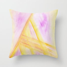 Triangle striations  Throw Pillow