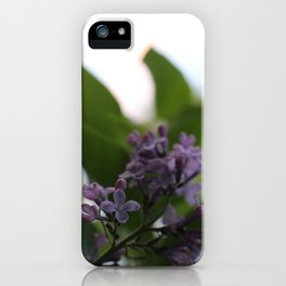 Flower Photography-Lilac iPhone Case