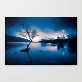Padarn LakeTree Snowdonia Canvas Print