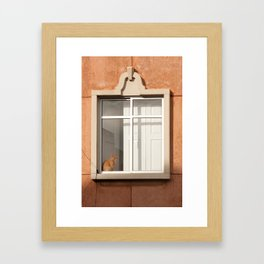 Faro Tabby Framed Art Print