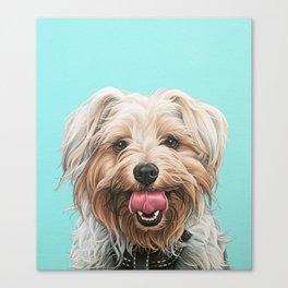 Adorable Yorkie Painting, Yorkshire Terrier Portrait, Smiling Yorkie Art Canvas Print