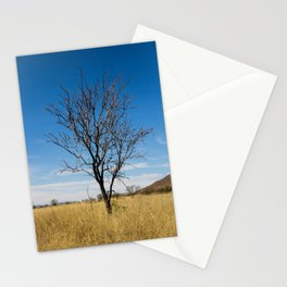 Lone dry tree in serene scene with blue sky Stationery Cards