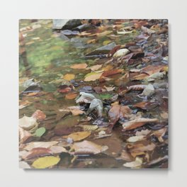 """""""Warm fall day"""" Metal Print"""