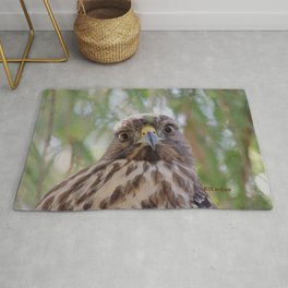 Hawk Eyes in the Willow Rug