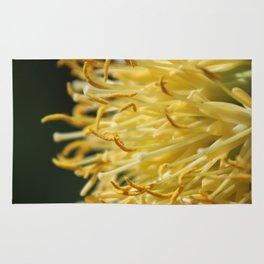 Closeup Parry's Century Plant Rug