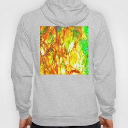 Sunset Ammolite Hoody