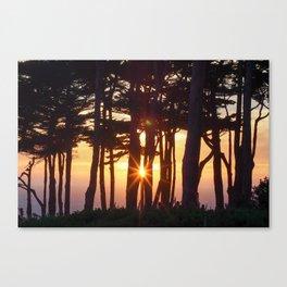 Light Run Canvas Print