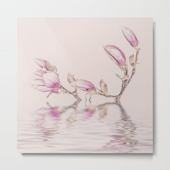 Soft Pink Magnolia Flowers And Water Reflection Metal Print