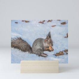 Hard nut to crack Mini Art Print