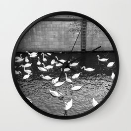 Swans in Berlin Wall Clock