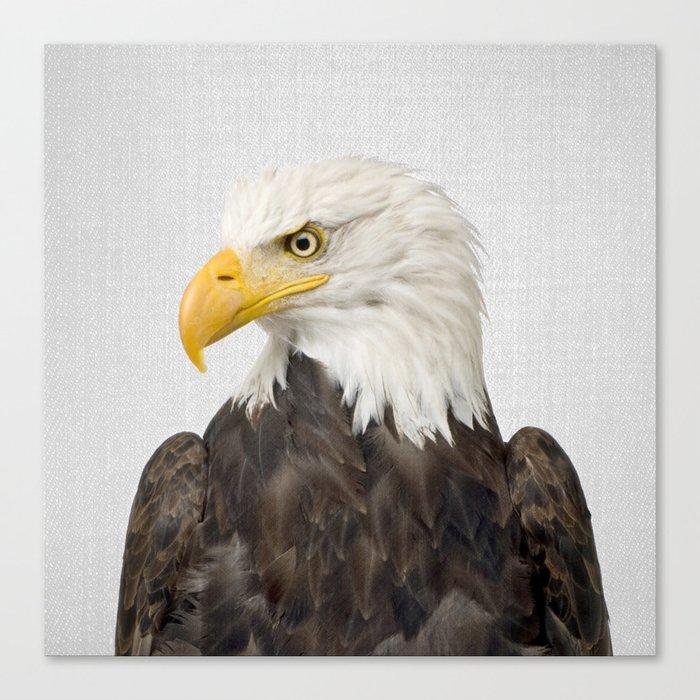 Eagle - Colorful Canvas Print